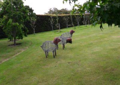 Renwick les moutons sur la maison